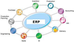 ניהול וליווי פרויקט ERP