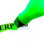 ניהול ERP